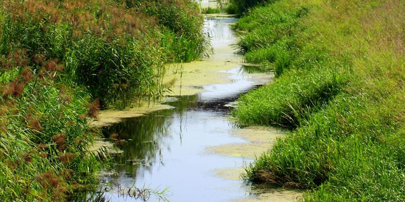 Nederlandse drinkwatervoorziening in gevaar